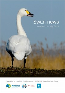 Swan news cover
