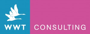 wwt_consulting_logo_CMYK